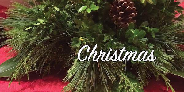 ChristmasEmailBanner600.jpeg